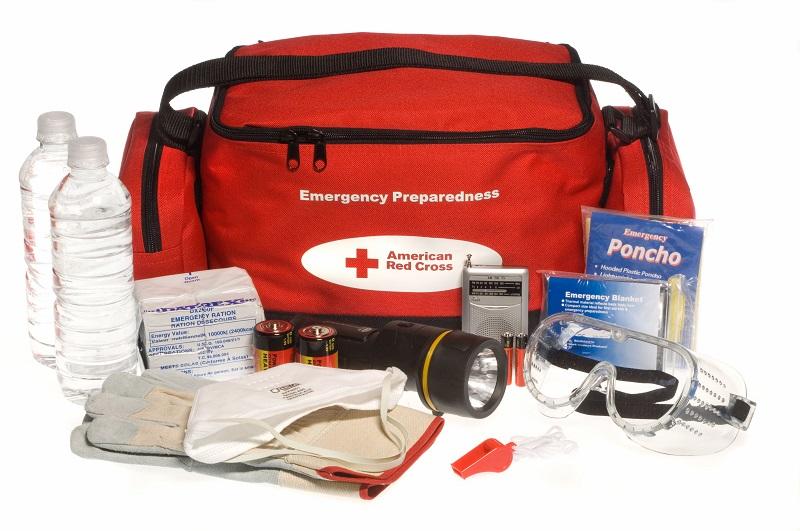 FEMA_-_37174_-_Emergency_Preparedness__ready_to_go__kit.